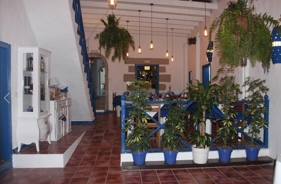 Agave Azul Lanzarote