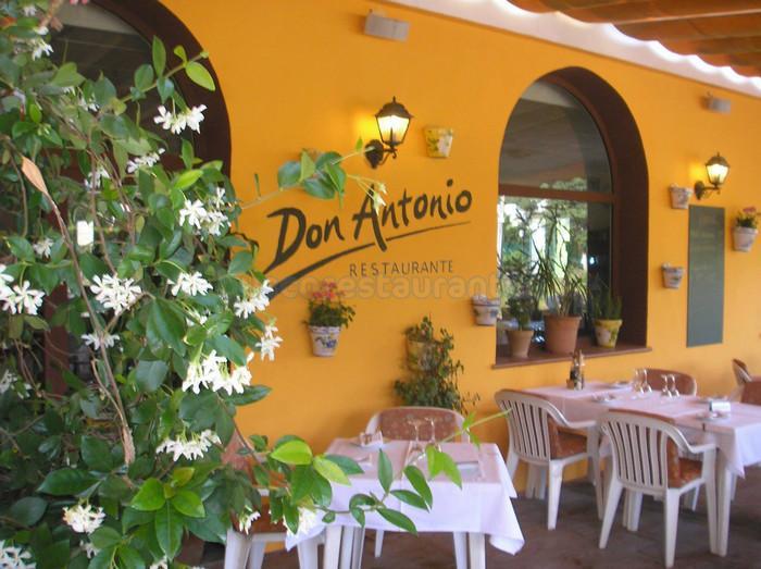 Don Antonio