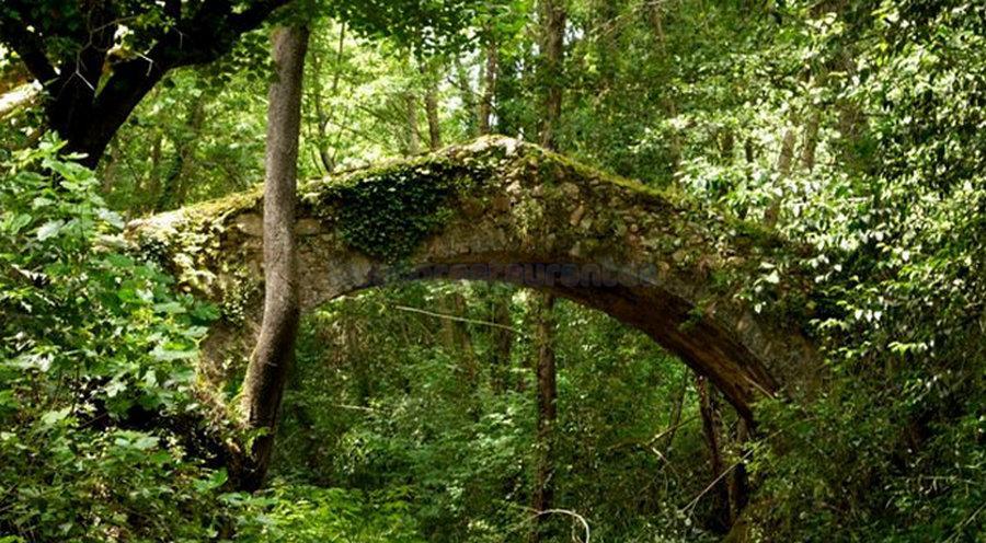 Pont del moli del segle XV