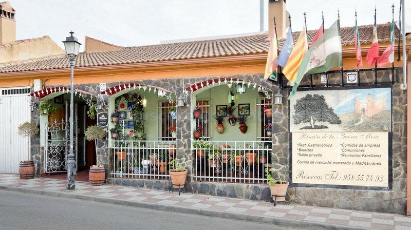 El Olivo de Miguel y Celia