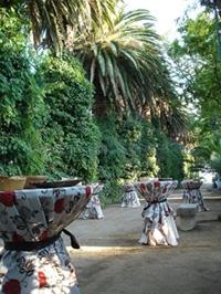 Buffet Hacienda Jardin la Vara