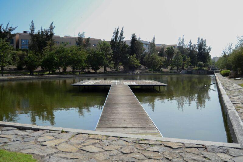 la terraza del parque