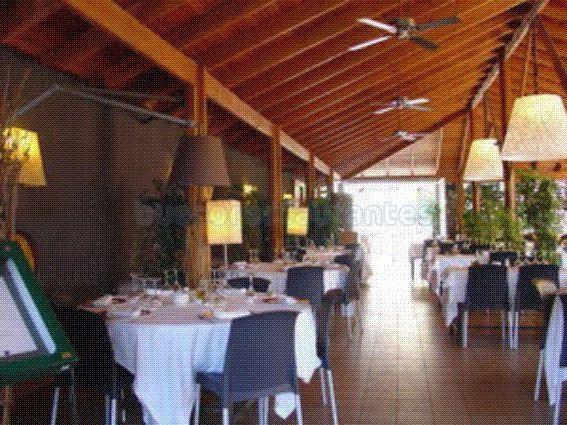 comedor terraza 2