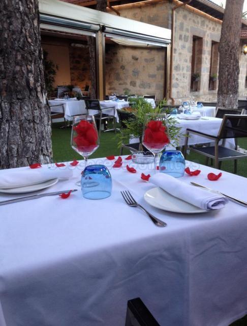 Olive Gastrobar & Restaurante