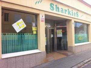 Bocateria Sharkies