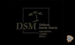 Restaurante Dehesa Santa María - Granollers