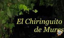 Restaurante El Chiringuito de Mures